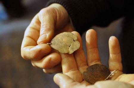 penny-earring-in-megans-hand