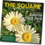 thesquare_spring2015