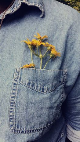 jean shirt pocket flowers